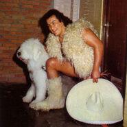 Perro Aguayo 2