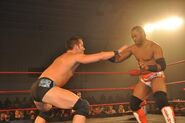 ROH Glory by Honor X 8