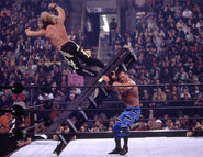 Royal Rumble 2001.17