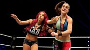 WWE World Tour 2015 - Nottingham.12