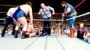 SummerSlam 1989-18