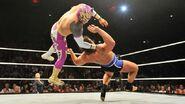 WWE WrestleMania Revenge Tour 2014 - Leeds.6