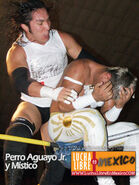 Perro Aguayo Jr. 7