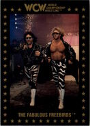 1991 WCW Collectible Trading Cards (Championship Marketing) The Fabulous Freebirds 5