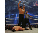 WrestleMania 23.24
