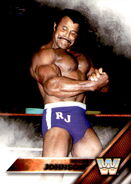 2016 WWE (Topps) Then, Now, Forever Rocky Johnson 192