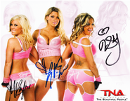Lacey Von Erich Madison Rayne and Velvet Sky