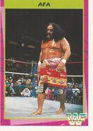 1995 WWF Wrestling Trading Cards (Merlin) Afa 173