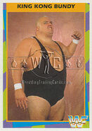 1995 WWF Wrestling Trading Cards (Merlin) King Kong Bundy 17