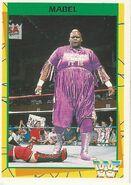 1995 WWF Wrestling Trading Cards (Merlin) Mabel 113