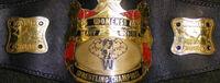 OVW Women's Championship