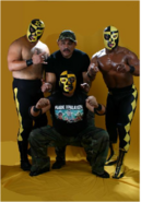 Pierroth Family