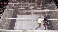 Steel Cage Images.21