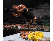 SummerSlam 2006.9