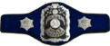 WWWF 1963-1971