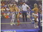 Great American Bash 1990.00025