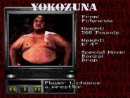 WWF RAW (JUE) -!-010