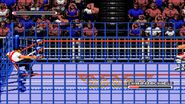 WWF Rage in the Cage (Game).6