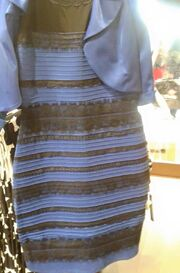 Black-and-Blue-or-White-and-Gold