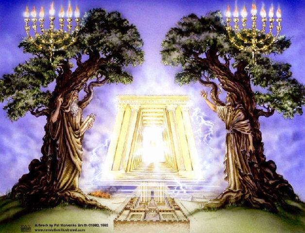 File:Revelation2WitnessesOliveTree 703.jpg