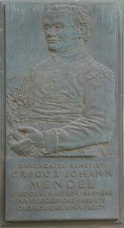Gregor-Johann-Mendel-memorial-plaque