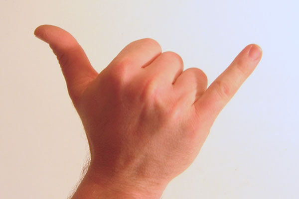 File:Gesture raised fist with thumb and pinky lifted.jpg