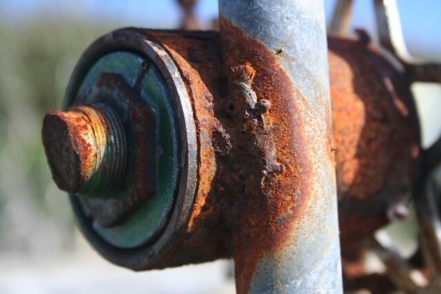 File:Rust03102006.JPG