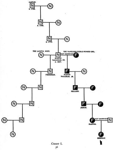 File:Kallikaks chart1.jpg