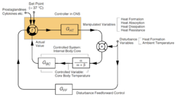 Thermoregulation simplified