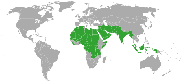 File:Polygamy world map.png