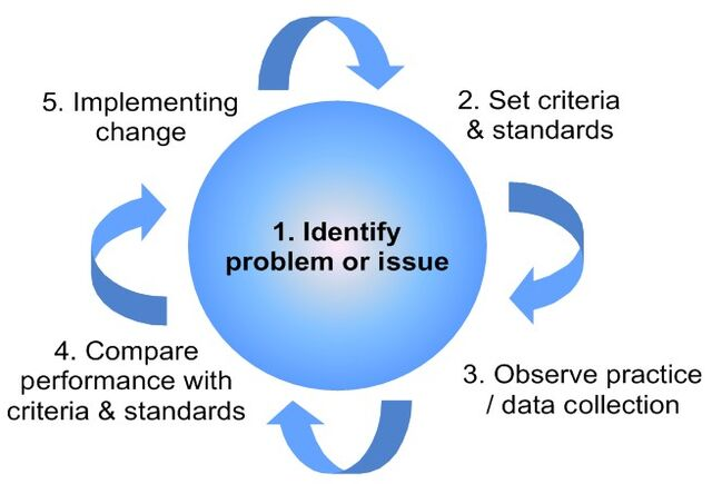 File:Clinical audit cycle.jpg