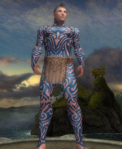 File:493px-Armor ascetic 15k m.jpg