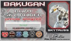 Sky Raider ID with The Wolf's name