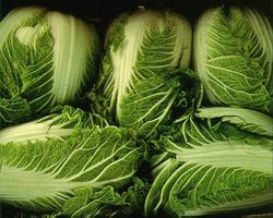 File:Chincabbage.jpg
