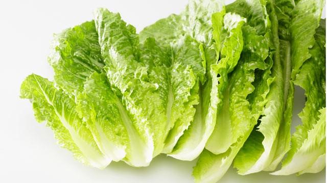 File:Gty romaine lettuce recall thg 110929 wg.jpg