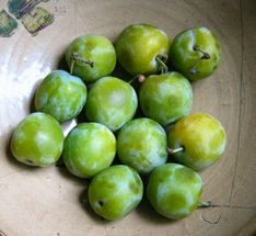File:Greengages.jpg