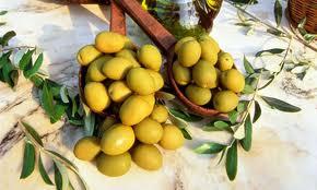 File:Marche olives.jpg