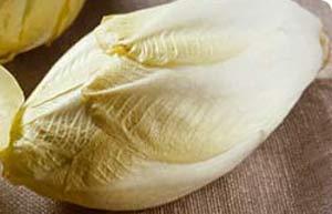 File:Chicory.jpg
