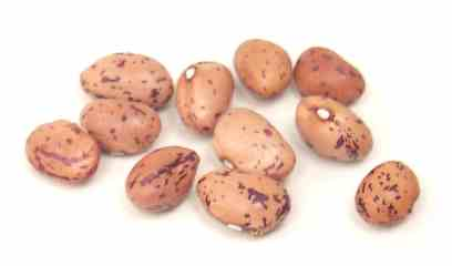 File:Tongues of fire bean.jpg