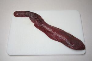 Pig spleen