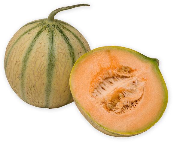 File:Charentais melon.jpg