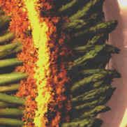 Asparagusmimosa