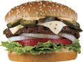 Pepper Jack Jalapeno Burger.jpg