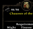 Chausses of the Legion