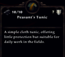 Peasant's Clothing