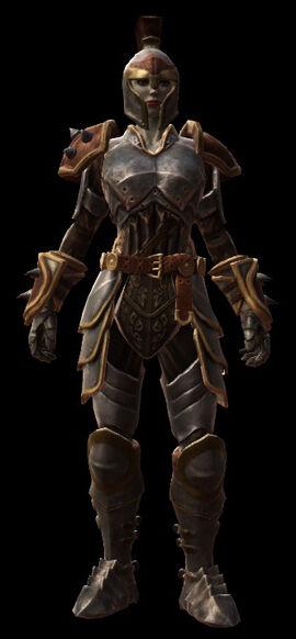 The guardian armor set female