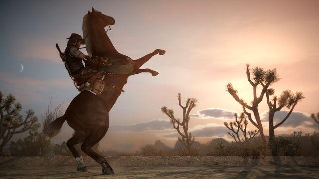 File:Rdr horse11.jpg