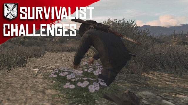 File:Rdr survivalist challenges.jpg