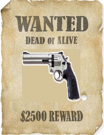 File:Wantedposter.jpg
