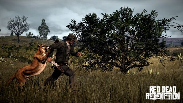 File:Red-dead-redemption-20100128005811943.jpg